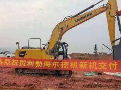 热烈祝贺重庆客户第八台利勃海尔挖掘机交付!