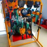 江西九江行车厂家生产销售气动葫芦