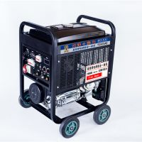 小型300A氩弧焊发电一体机