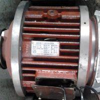 杭州ZD系列锥形转子电动机